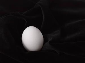 Egg_Leaf-13
