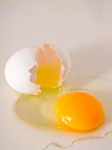 Egg_Leaf-7