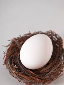 Egg_Leaf-3