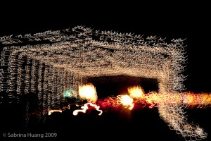 20091218_Christmas_Lights_0081