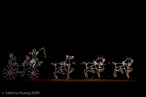 20091218_Christmas_Lights_0011