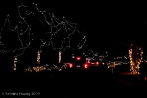 20091218_Christmas_Lights_0005