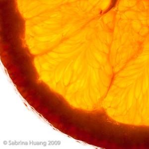Huang_Sabrina_Food2