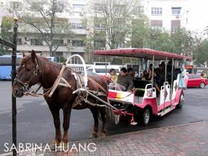 Tianjin-8