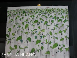 Shanghai-9