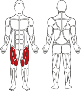 Leg-extension2