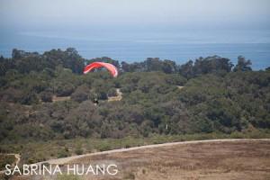 20120710Elings Park004