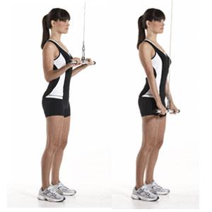 Triceps-pushdown1